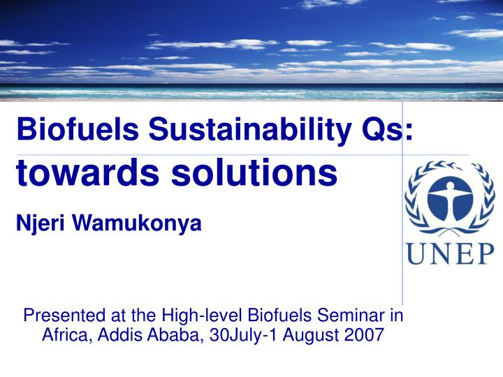 biofuels sustainability qs towards solutions njeri wamukonya n.