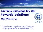 biofuels sustainability qs towards solutions njeri wamukonya