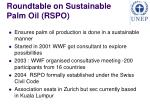 roundtable on sustainable palm oil rspo