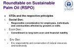 roundtable on sustainable palm oil rspo2
