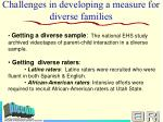 challenges in developing a measure for diverse families