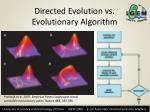 directed evolution vs evolutionary algorithm