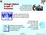 strategic options in agile it processes