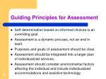 guiding principles for assessment