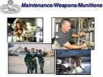 maintenance weapons munitions