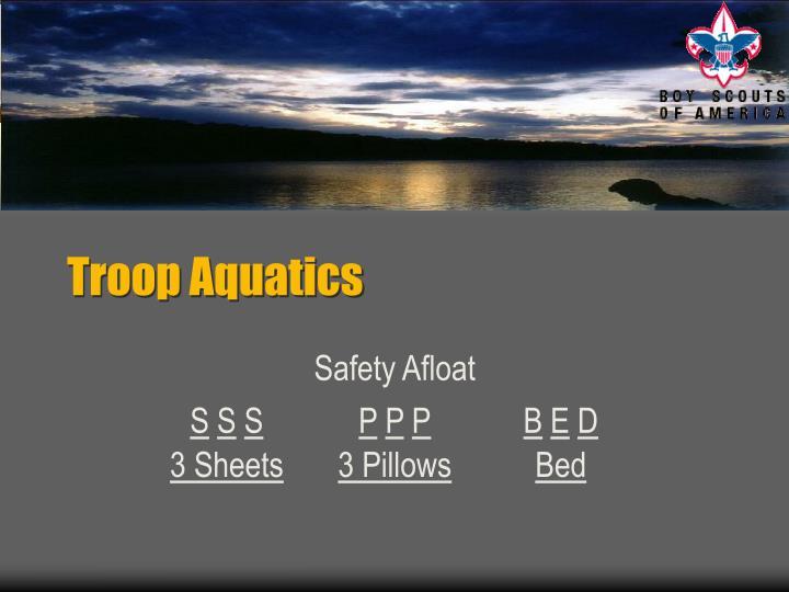 Troop aquatics1