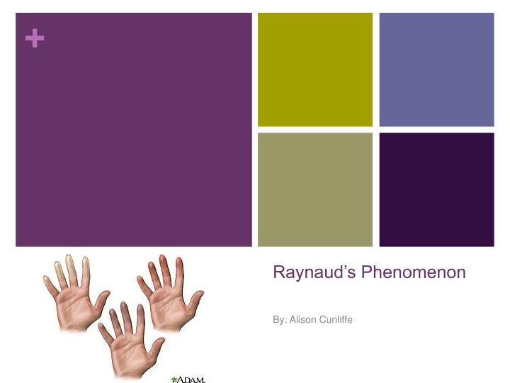 raynaud s phenomenon n.