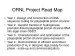ornl project road map