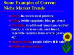 some examples of current niche market trends