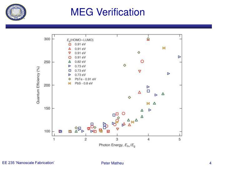 MEG Verification