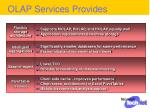 olap services provides