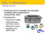 sql 7 0 repository what is it