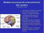 modelo funcional de entendimiento del cerebro