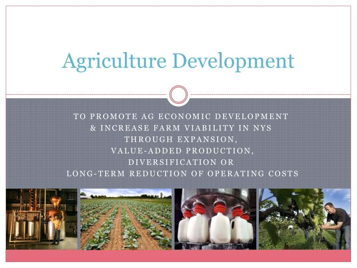 agriculture development n.