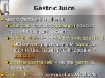 gastric juice