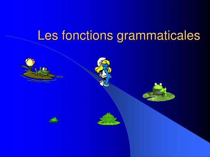 les fonctions grammaticales n.