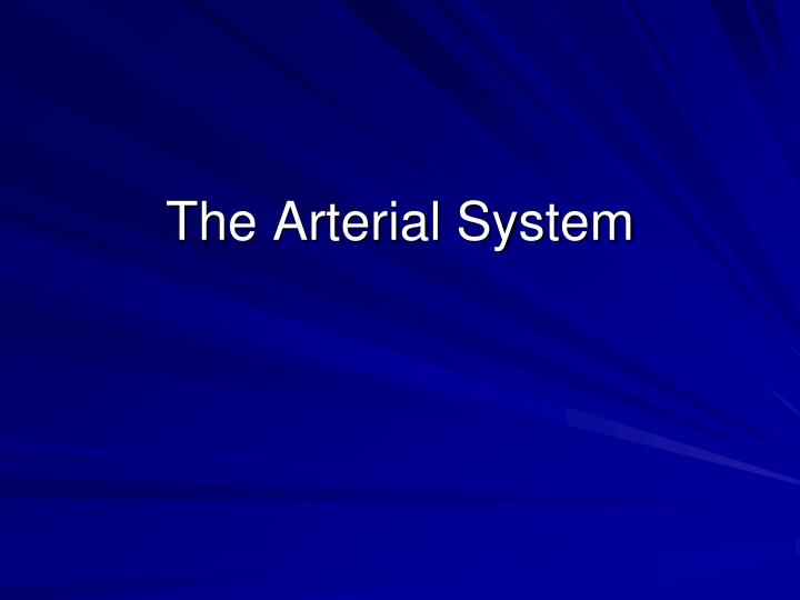 the arterial system n.