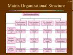 matrix organizational structure1