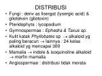 distribusi
