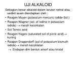 uji alkaloid