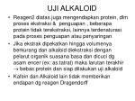 uji alkaloid1