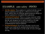 example auto safety pinto