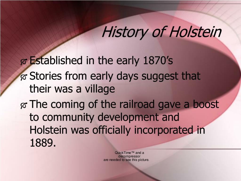 History of Holstein