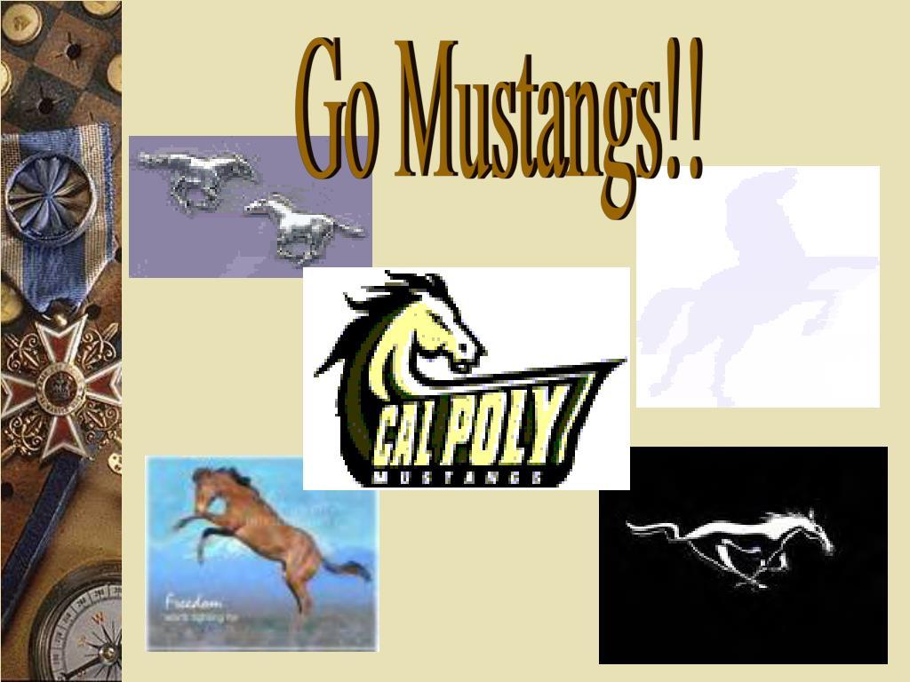 Go Mustangs!!