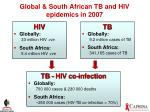 global south african tb and hiv epidemics in 2007