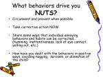 what behaviors drive you nuts