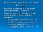 transsexual gender and culture two spirits