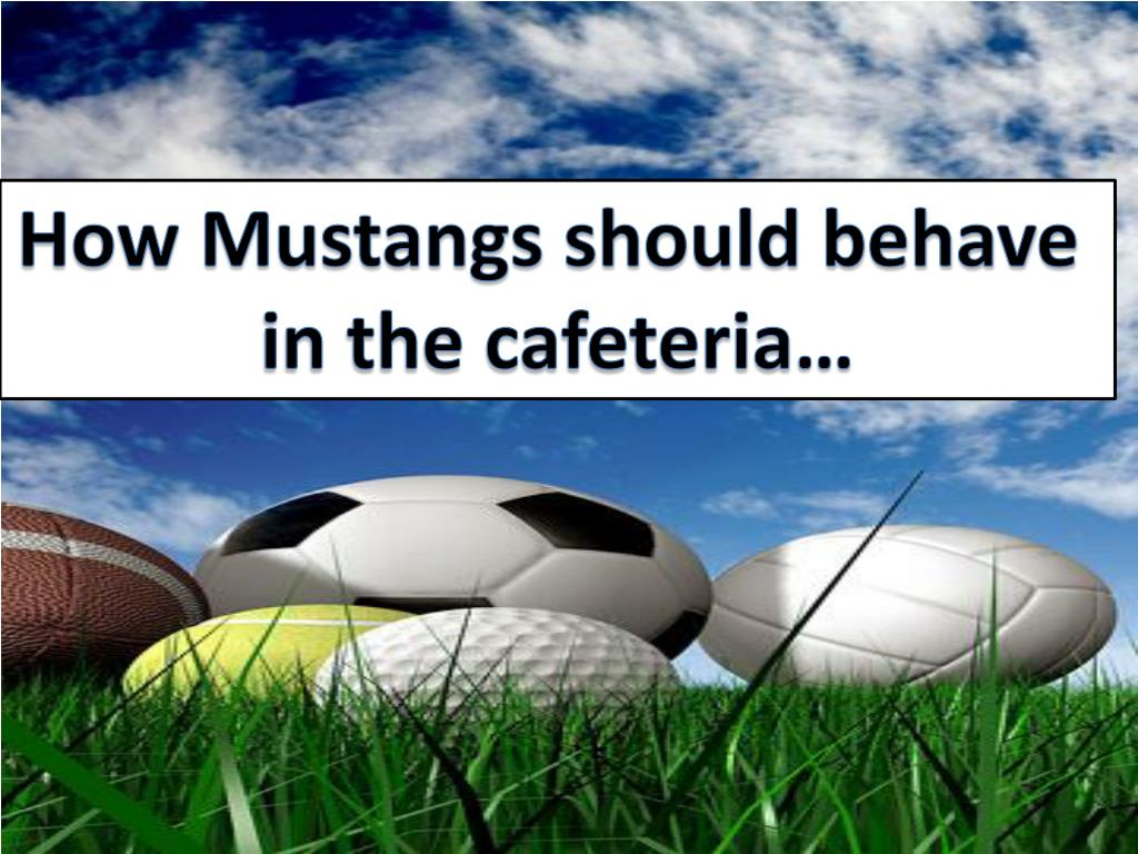 How Mustangs should behave
