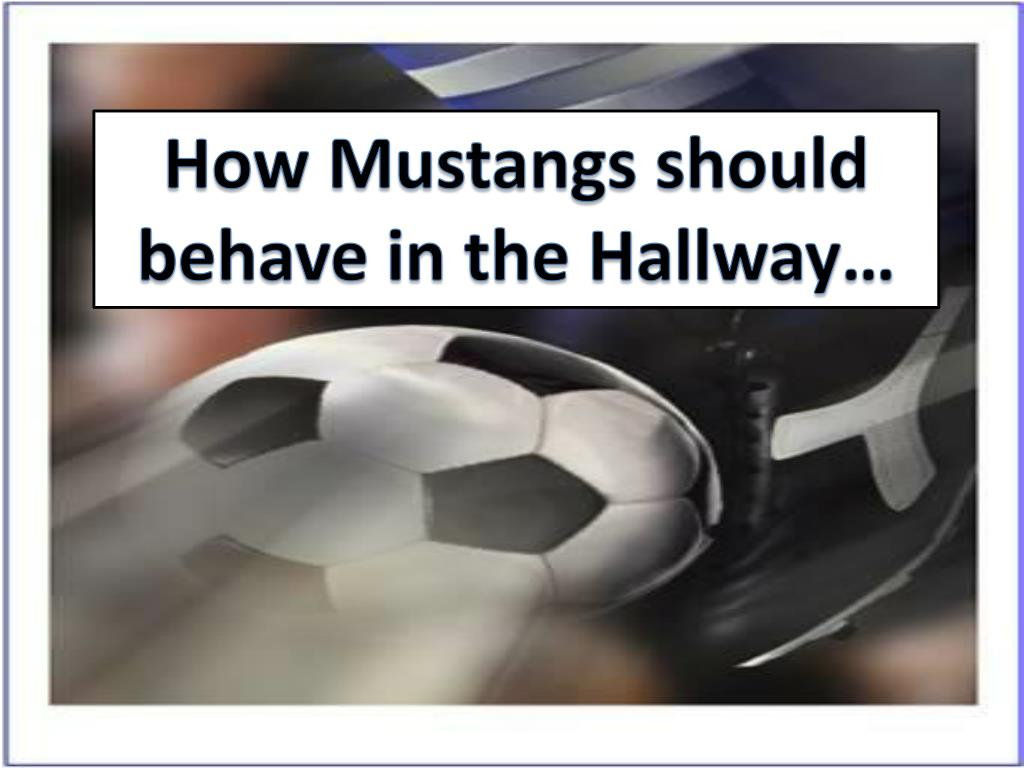 How Mustangs should behave in the Hallway…