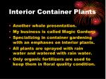 interior container plants