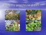 this is my greenhouse dream