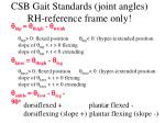 csb gait standards joint angles rh reference frame only