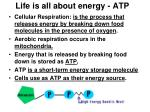 life is all about energy atp