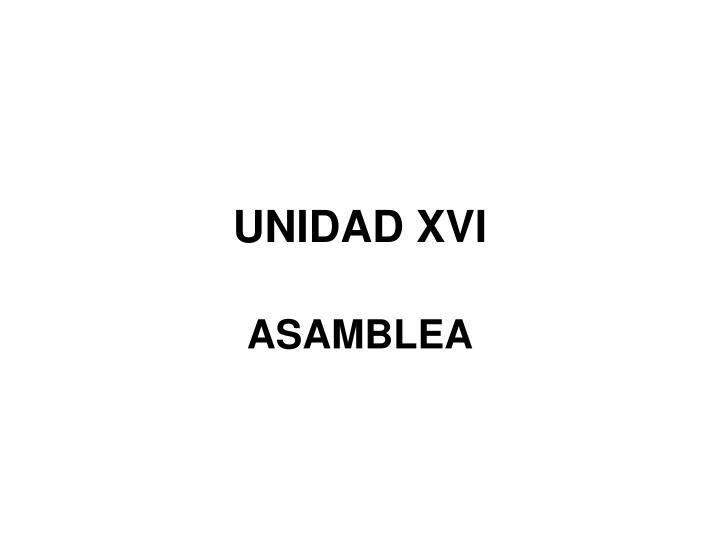 unidad xvi n.