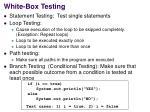 white box testing1