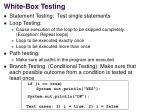 white box testing2