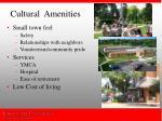 cultural amenities