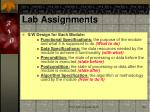 lab assignments1