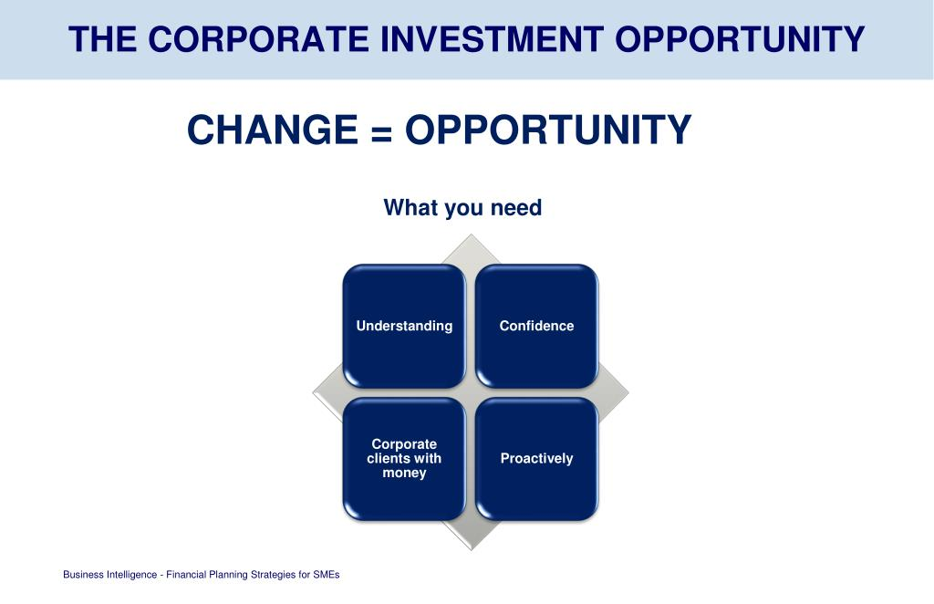 THE CORPORATE INVESTMENT OPPORTUNITY