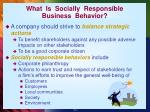what is socially responsible business behavior