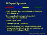 ai expert systems