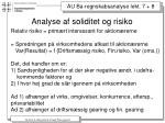 analyse af soliditet og risiko4