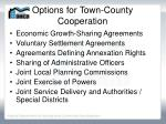 options for town county cooperation