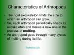 characteristics of arthropods2