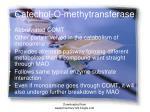 catechol o methytransferase