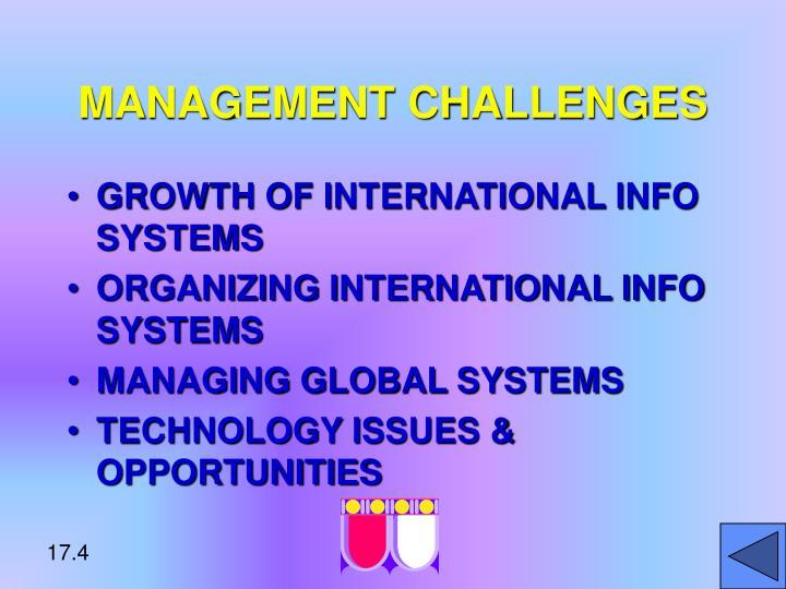 challenges of management information system pdf
